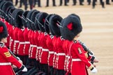 Trooping the Colour 2016. Horse Guards Parade, Westminster, London SW1A, London, United Kingdom, on 11 June 2016 at 11:18, image #496