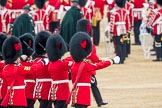 Trooping the Colour 2016. Horse Guards Parade, Westminster, London SW1A, London, United Kingdom, on 11 June 2016 at 11:19, image #500