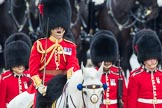 Trooping the Colour 2016. Horse Guards Parade, Westminster, London SW1A, London, United Kingdom, on 11 June 2016 at 11:19, image #505