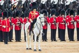 Trooping the Colour 2016. Horse Guards Parade, Westminster, London SW1A, London, United Kingdom, on 11 June 2016 at 11:19, image #506