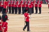 Trooping the Colour 2016. Horse Guards Parade, Westminster, London SW1A, London, United Kingdom, on 11 June 2016 at 11:20, image #508