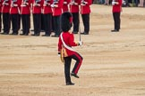 Trooping the Colour 2016. Horse Guards Parade, Westminster, London SW1A, London, United Kingdom, on 11 June 2016 at 11:20, image #509