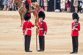 Trooping the Colour 2016. Horse Guards Parade, Westminster, London SW1A, London, United Kingdom, on 11 June 2016 at 11:20, image #510
