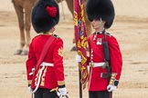 Trooping the Colour 2016. Horse Guards Parade, Westminster, London SW1A, London, United Kingdom, on 11 June 2016 at 11:20, image #511