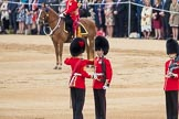 Trooping the Colour 2016. Horse Guards Parade, Westminster, London SW1A, London, United Kingdom, on 11 June 2016 at 11:20, image #512
