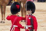 Trooping the Colour 2016. Horse Guards Parade, Westminster, London SW1A, London, United Kingdom, on 11 June 2016 at 11:20, image #513