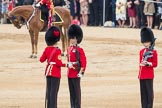 Trooping the Colour 2016. Horse Guards Parade, Westminster, London SW1A, London, United Kingdom, on 11 June 2016 at 11:20, image #514