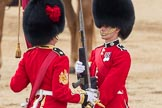 Trooping the Colour 2016. Horse Guards Parade, Westminster, London SW1A, London, United Kingdom, on 11 June 2016 at 11:20, image #515