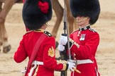 Trooping the Colour 2016. Horse Guards Parade, Westminster, London SW1A, London, United Kingdom, on 11 June 2016 at 11:20, image #516