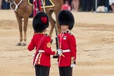 Trooping the Colour 2016. Horse Guards Parade, Westminster, London SW1A, London, United Kingdom, on 11 June 2016 at 11:21, image #517