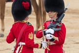 Trooping the Colour 2016. Horse Guards Parade, Westminster, London SW1A, London, United Kingdom, on 11 June 2016 at 11:21, image #518