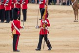Trooping the Colour 2016. Horse Guards Parade, Westminster, London SW1A, London, United Kingdom, on 11 June 2016 at 11:21, image #520