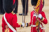Trooping the Colour 2016. Horse Guards Parade, Westminster, London SW1A, London, United Kingdom, on 11 June 2016 at 11:21, image #521