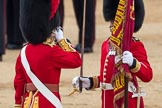 Trooping the Colour 2016. Horse Guards Parade, Westminster, London SW1A, London, United Kingdom, on 11 June 2016 at 11:21, image #522