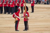Trooping the Colour 2016. Horse Guards Parade, Westminster, London SW1A, London, United Kingdom, on 11 June 2016 at 11:21, image #523
