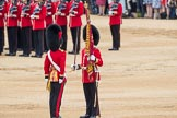 Trooping the Colour 2016. Horse Guards Parade, Westminster, London SW1A, London, United Kingdom, on 11 June 2016 at 11:21, image #524