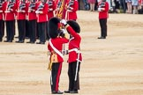 Trooping the Colour 2016. Horse Guards Parade, Westminster, London SW1A, London, United Kingdom, on 11 June 2016 at 11:21, image #525