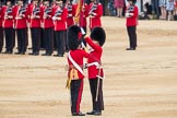 Trooping the Colour 2016. Horse Guards Parade, Westminster, London SW1A, London, United Kingdom, on 11 June 2016 at 11:21, image #526