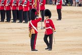Trooping the Colour 2016. Horse Guards Parade, Westminster, London SW1A, London, United Kingdom, on 11 June 2016 at 11:21, image #527