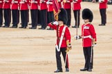 Trooping the Colour 2016. Horse Guards Parade, Westminster, London SW1A, London, United Kingdom, on 11 June 2016 at 11:21, image #528