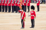 Trooping the Colour 2016. Horse Guards Parade, Westminster, London SW1A, London, United Kingdom, on 11 June 2016 at 11:21, image #529