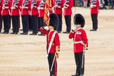 Trooping the Colour 2016. Horse Guards Parade, Westminster, London SW1A, London, United Kingdom, on 11 June 2016 at 11:21, image #530