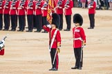 Trooping the Colour 2016. Horse Guards Parade, Westminster, London SW1A, London, United Kingdom, on 11 June 2016 at 11:22, image #531