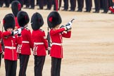 Trooping the Colour 2016. Horse Guards Parade, Westminster, London SW1A, London, United Kingdom, on 11 June 2016 at 11:22, image #532