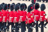 Trooping the Colour 2016. Horse Guards Parade, Westminster, London SW1A, London, United Kingdom, on 11 June 2016 at 11:22, image #534