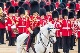 Trooping the Colour 2016. Horse Guards Parade, Westminster, London SW1A, London, United Kingdom, on 11 June 2016 at 11:22, image #536