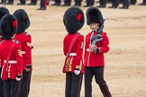 Trooping the Colour 2016. Horse Guards Parade, Westminster, London SW1A, London, United Kingdom, on 11 June 2016 at 11:22, image #537
