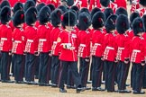 Trooping the Colour 2016. Horse Guards Parade, Westminster, London SW1A, London, United Kingdom, on 11 June 2016 at 11:22, image #538