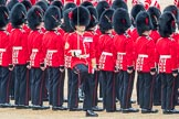 Trooping the Colour 2016. Horse Guards Parade, Westminster, London SW1A, London, United Kingdom, on 11 June 2016 at 11:22, image #539
