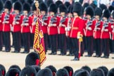 Trooping the Colour 2016. Horse Guards Parade, Westminster, London SW1A, London, United Kingdom, on 11 June 2016 at 11:23, image #541