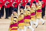 Trooping the Colour 2016. Horse Guards Parade, Westminster, London SW1A, London, United Kingdom, on 11 June 2016 at 11:26, image #554