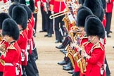 Trooping the Colour 2016. Horse Guards Parade, Westminster, London SW1A, London, United Kingdom, on 11 June 2016 at 11:26, image #558