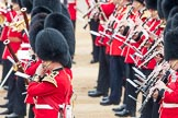 Trooping the Colour 2016. Horse Guards Parade, Westminster, London SW1A, London, United Kingdom, on 11 June 2016 at 11:26, image #559