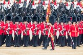 Trooping the Colour 2016. Horse Guards Parade, Westminster, London SW1A, London, United Kingdom, on 11 June 2016 at 11:28, image #564