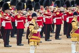 Trooping the Colour 2016. Horse Guards Parade, Westminster, London SW1A, London, United Kingdom, on 11 June 2016 at 11:28, image #567