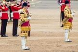 Trooping the Colour 2016. Horse Guards Parade, Westminster, London SW1A, London, United Kingdom, on 11 June 2016 at 11:28, image #569