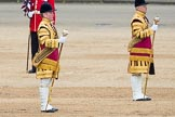 Trooping the Colour 2016. Horse Guards Parade, Westminster, London SW1A, London, United Kingdom, on 11 June 2016 at 11:28, image #570