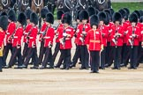 Trooping the Colour 2016. Horse Guards Parade, Westminster, London SW1A, London, United Kingdom, on 11 June 2016 at 11:29, image #578