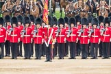 Trooping the Colour 2016. Horse Guards Parade, Westminster, London SW1A, London, United Kingdom, on 11 June 2016 at 11:29, image #581