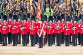 Trooping the Colour 2016. Horse Guards Parade, Westminster, London SW1A, London, United Kingdom, on 11 June 2016 at 11:29, image #583