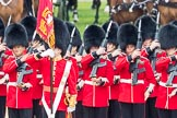 Trooping the Colour 2016. Horse Guards Parade, Westminster, London SW1A, London, United Kingdom, on 11 June 2016 at 11:29, image #584