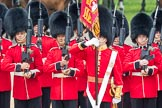 Trooping the Colour 2016. Horse Guards Parade, Westminster, London SW1A, London, United Kingdom, on 11 June 2016 at 11:29, image #585