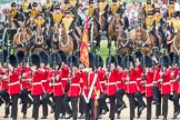 Trooping the Colour 2016. Horse Guards Parade, Westminster, London SW1A, London, United Kingdom, on 11 June 2016 at 11:29, image #586