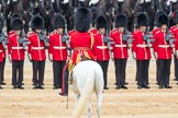 Trooping the Colour 2016. Horse Guards Parade, Westminster, London SW1A, London, United Kingdom, on 11 June 2016 at 11:30, image #588