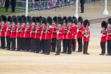 Trooping the Colour 2016. Horse Guards Parade, Westminster, London SW1A, London, United Kingdom, on 11 June 2016 at 11:32, image #605