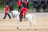Trooping the Colour 2016. Horse Guards Parade, Westminster, London SW1A, London, United Kingdom, on 11 June 2016 at 11:33, image #607